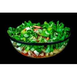 Salade de Pates (Saladier 15-20 pers)